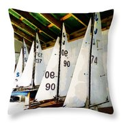 The Boat Shed Throw Pillow