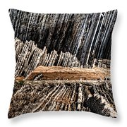 The Book Of Life II Unframed Throw Pillow