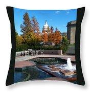 The Botanic Garden Fountain Throw Pillow
