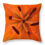 The Botanical Illusion Throw Pillow