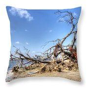 The Bottle Tree Throw Pillow