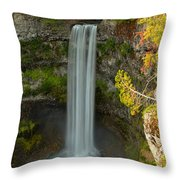 The Brandywine Plunge Throw Pillow