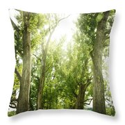The Bright Path Throw Pillow