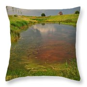 The Brittany Countryside Throw Pillow