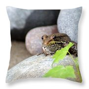 The Bronze Frog Throw Pillow