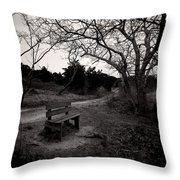 The Brooding Bench Throw Pillow