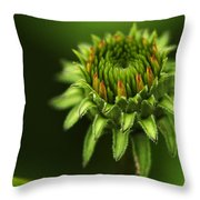The Bud Is Prettier Than The Bloom Throw Pillow