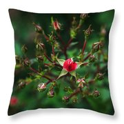 The Bud's For You Throw Pillow
