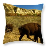 The Buffalo Dance Throw Pillow