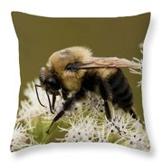 The Bumble Bee.. Throw Pillow