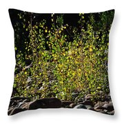 The Burning Bush Throw Pillow