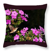 The Butterfly Garden At Night Throw Pillow