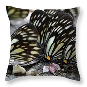The Butterfly Gathering Throw Pillow