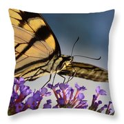 The Butterfly Throw Pillow by Lori Tambakis