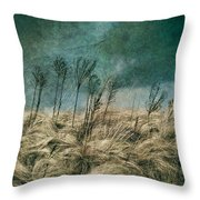 The Calm In The Storm II Throw Pillow