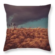 The Calm In The Storm Throw Pillow