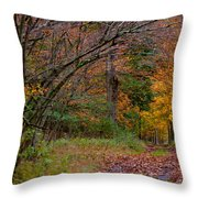 The Camp Drive Throw Pillow