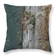 The Canal Water Throw Pillow