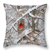 The Cardinal Rules Throw Pillow