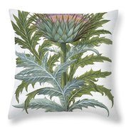 The Cardoon, From The Hortus Throw Pillow