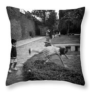 The Cartwheel Throw Pillow
