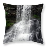 The Cascades 1 Throw Pillow