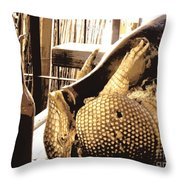 The Cask Of Armadillo Throw Pillow