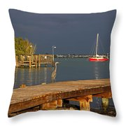The Casual Observer Throw Pillow