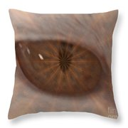 The Cat Eye Throw Pillow