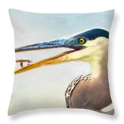 The Catch Throw Pillow