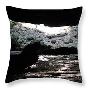 The Cave Is Not Dry  Throw Pillow