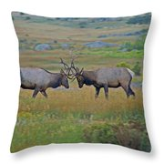 The Challenge Throw Pillow