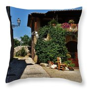 The Charming Patio Throw Pillow