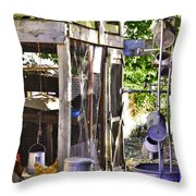 The Chicken Coop Throw Pillow