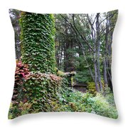 The Chimney Throw Pillow