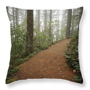 The Chosen Path Throw Pillow