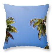 The Coconut Ladder Throw Pillow