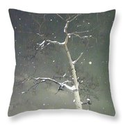 The Cold Bones Of Trees At Night Throw Pillow