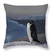 The Coldest Place On Earth... Throw Pillow