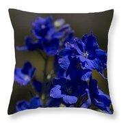 The Color Blue V6 Throw Pillow