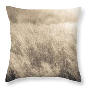 The Color Of Romance Throw Pillow