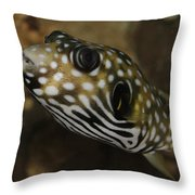 The Colorful Fish Throw Pillow