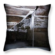 The Colors Of Cold Throw Pillow