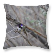 The Colors Of The Costas Throw Pillow