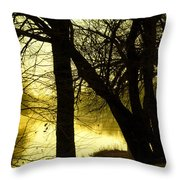 The Coming Cold Throw Pillow