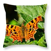 The Comma -- Polygonia C-album Throw Pillow