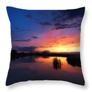 The Cool Of The Evening Throw Pillow