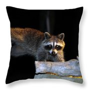 The Cornbread Bandit Homestretch Throw Pillow