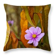 The Cosmos In The Peach Tree Throw Pillow
