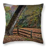 The Country Road Throw Pillow